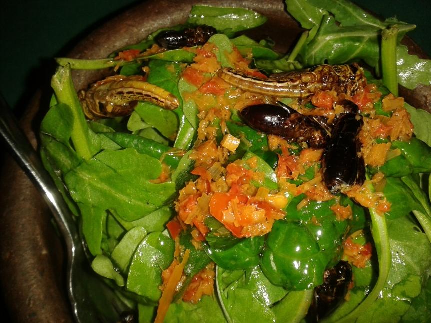 ARCH bug salad 2