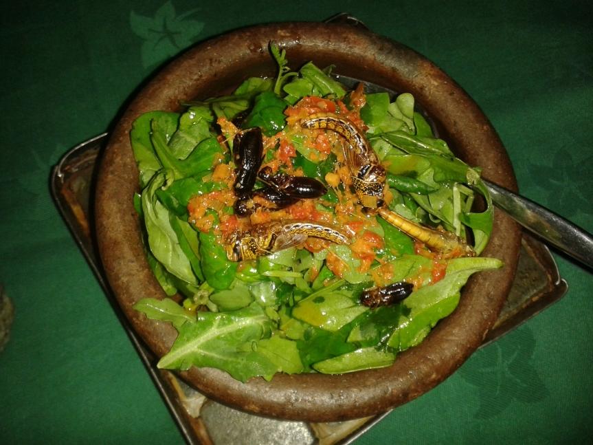 ARCH bug salad
